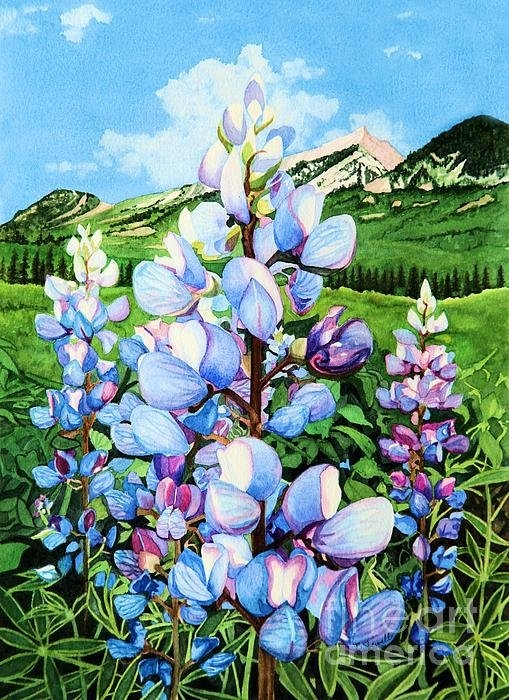 Barbara Jewell - Colorado Summer Blues Print