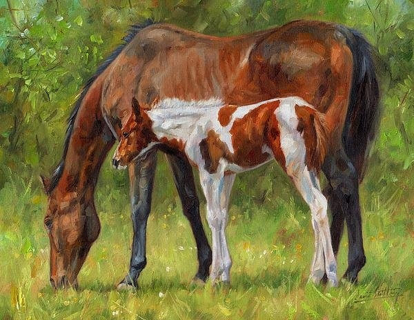David Stribbling - Horse and Foal Print