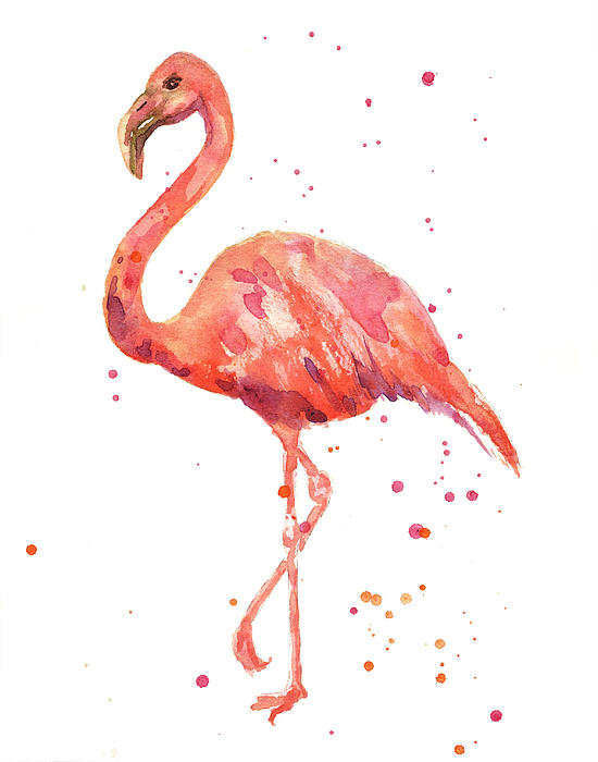 Alison Fennell - Flamingo Facing Left Print