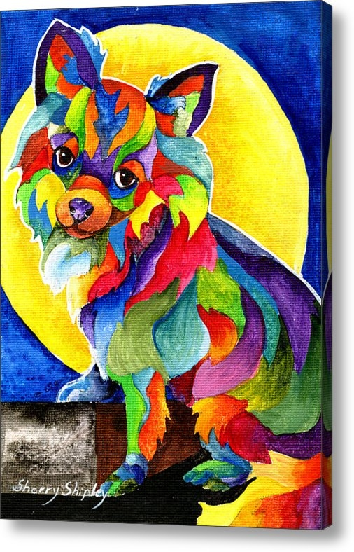 Sherry Shipley - Long Haired Chihuahua Print
