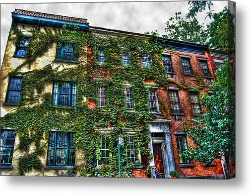 Randy Aveille - Greenwich Village Ivy 2 Print