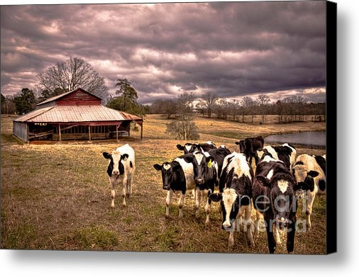 Reid Callaway - Red Barn and Photo Groupi... Print