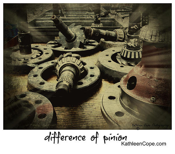 Kathleen Cope - Difference Of Pinion Print