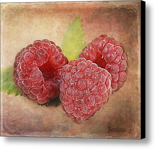 Barbara Orenya - Raspberries  Print