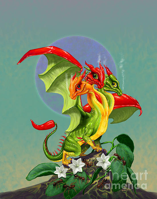 Stanley Morrison - Peppers Dragon Print