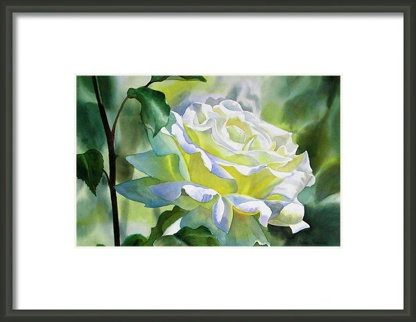 Sharon Freeman - White Rose with Yellow Gl... Print
