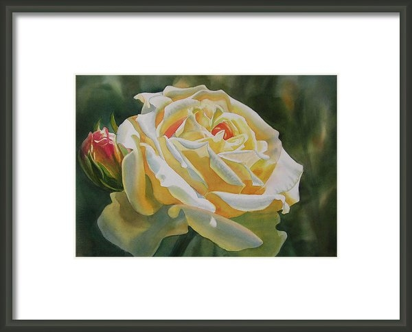 Sharon Freeman - Yellow Rose with Bud Print