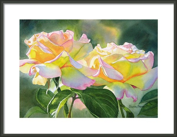 Sharon Freeman - Two Peace Rose Blossoms Print