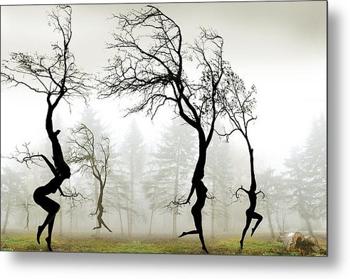 Igor Zenin - In The Mist Print