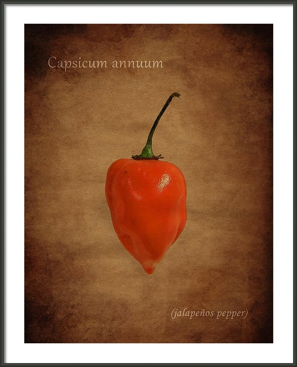 Mark Rogan - Jalapenos Print