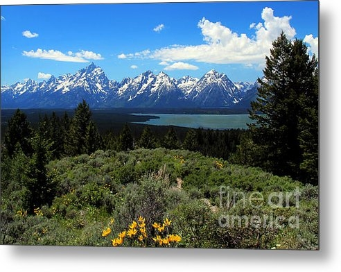 Jemmy Archer - Grand Tetons Print