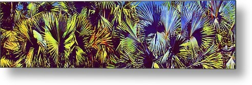 Michael Guirguis - Colored Palms Print