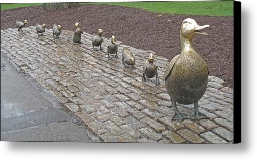 Barbara McDevitt - Make way for ducklings Print