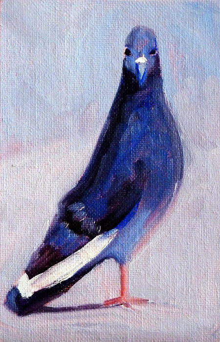 Nancy Merkle - Pigeon Bird Portrait Pain... Print
