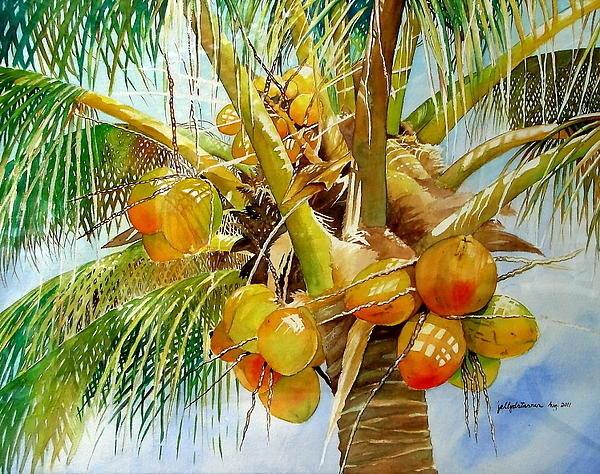 Jelly Starnes - Coconut Tree Print