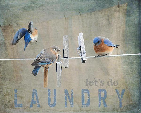 Jai Johnson - Laundry Day - Lets Do Lau... Print