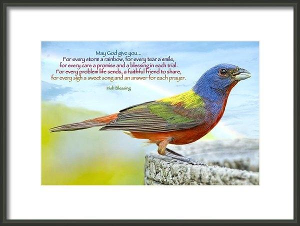 Bonnie Barry - For Every Storm a Rainbow... Print