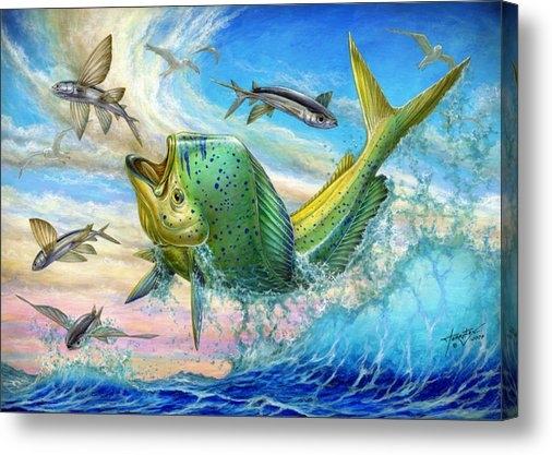 Terry Fox - Jumping Mahi Mahi And Fly... Print