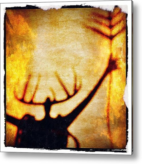 Paul Cutright - Fire Shaman Print