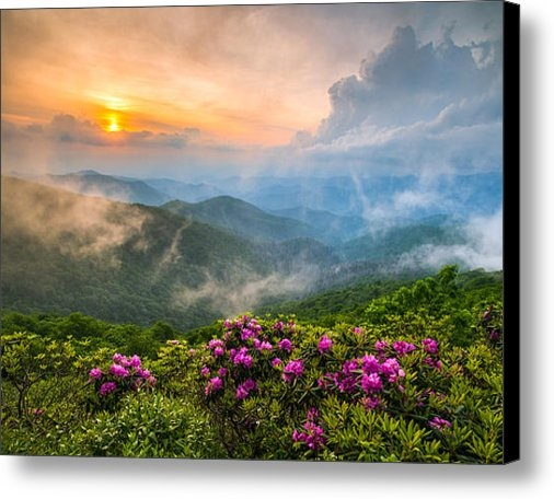 Dave Allen - North Carolina Blue Ridge... Print