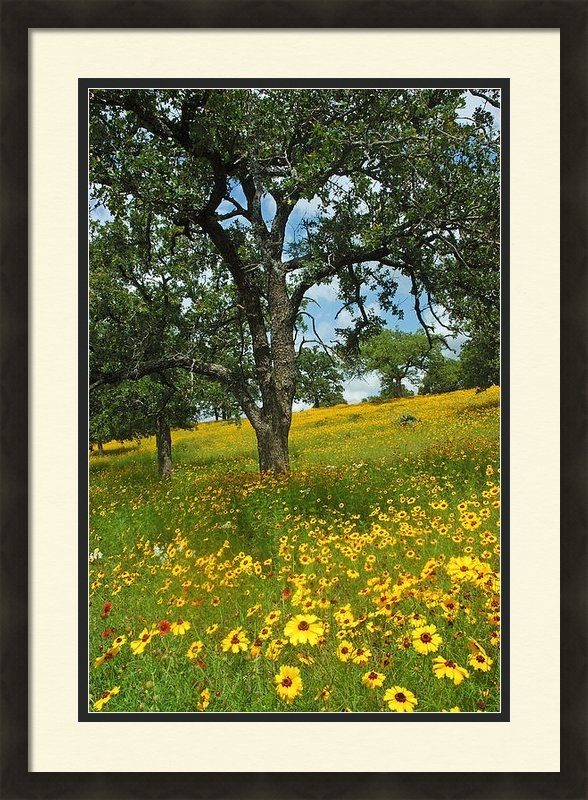 Robert Anschutz - Golden Hillside Print