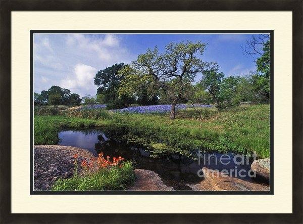 Daniel Dempster - Texas Hill Country - FS00... Print