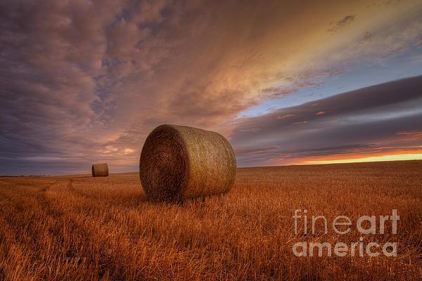Dan Jurak - Prairie Harvest Print