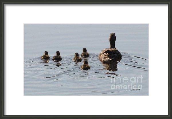 Gordon  Allen - Mallard Hen with Duckling... Print