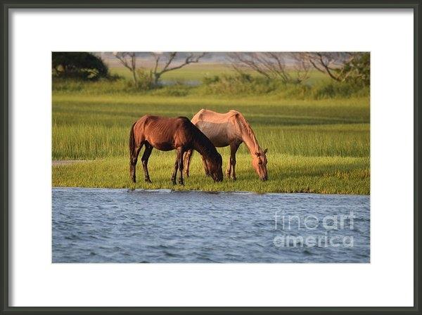 Gordon  Allen - Wild Horses of the North ... Print