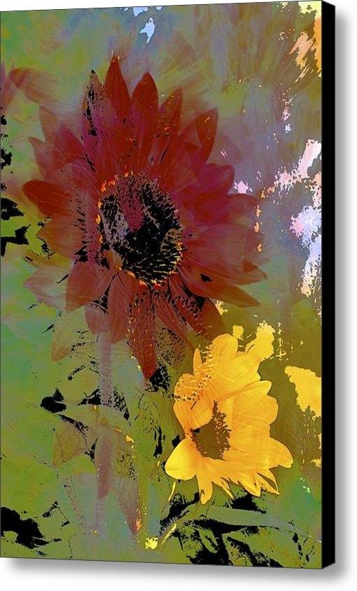 Pamela Cooper - Sunflower 33 Print