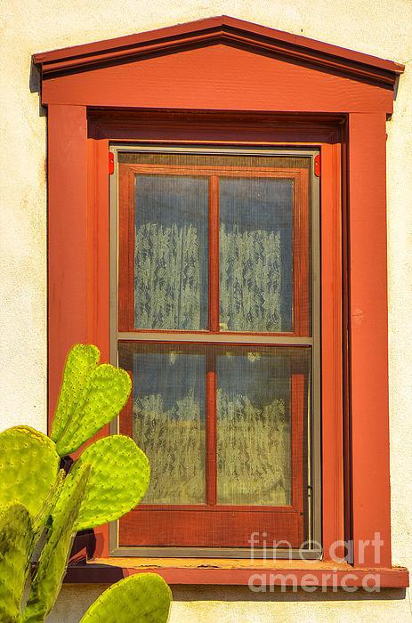 Larry White - Barrio Window Print