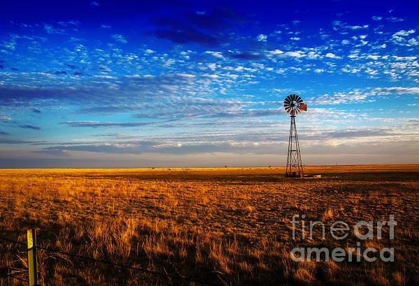 Fred Lassmann - Texas Plains Windmill Print