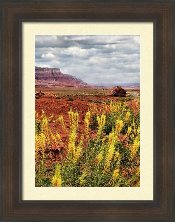 Barbara Manis - Arizona Landscape Print