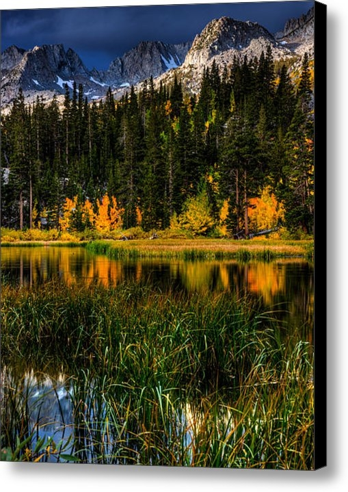 Beau Rogers - Weir Pond Autumn in Easte... Print