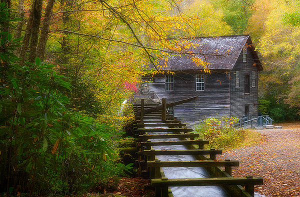 Gwen Cross - Mingus Mill in the Autumn Print