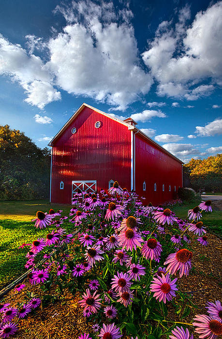Phil Koch - A Little More Country Print