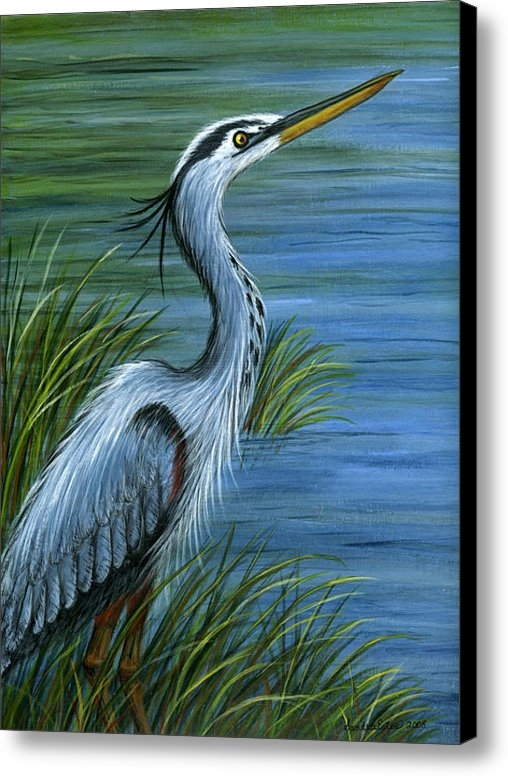 Sandra Estes - Great Blue Heron Print