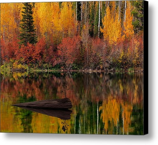 Leland D Howard - Autumn Reflections Print