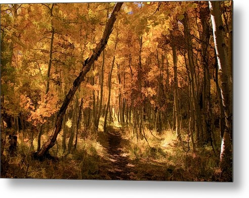 Donna Kennedy - Down the Golden Path Print