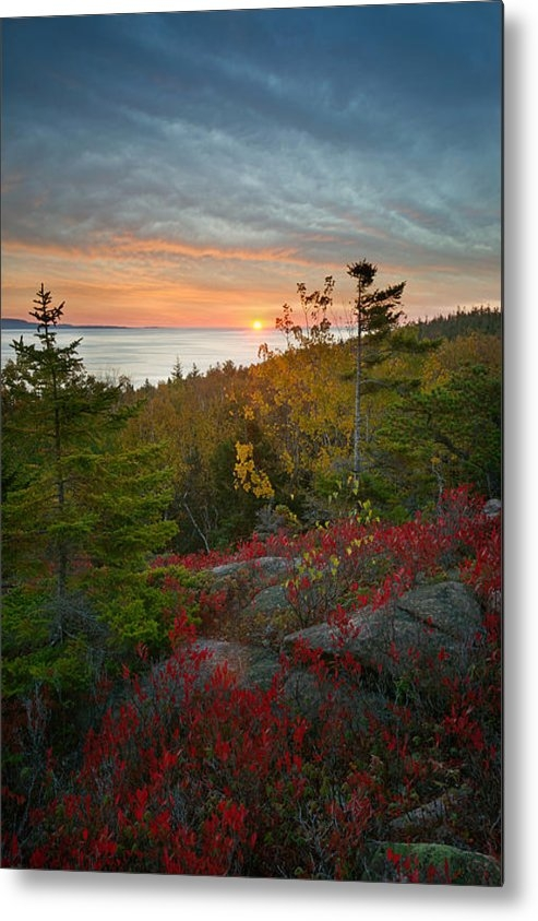 Darylann Leonard Photography - Sunrise Great Head ANP Print