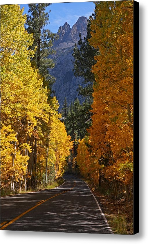 Steve Wolfe - Fall Colors in the Easter... Print