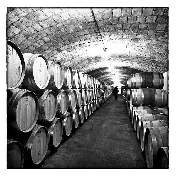 Nicole Neuefeind - Wine cellar with oak barr... Print