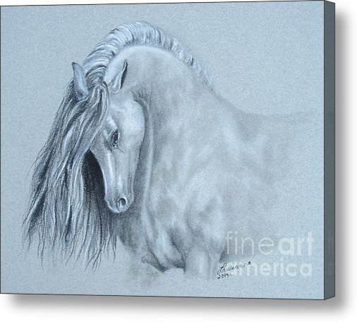 Laurianna Taylor - Grey Horse Print