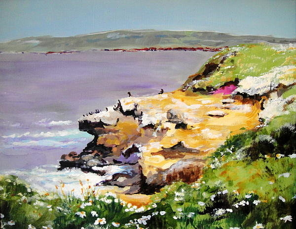 Edith Hunsberger - Seals in the Sun LaJolla ... Print