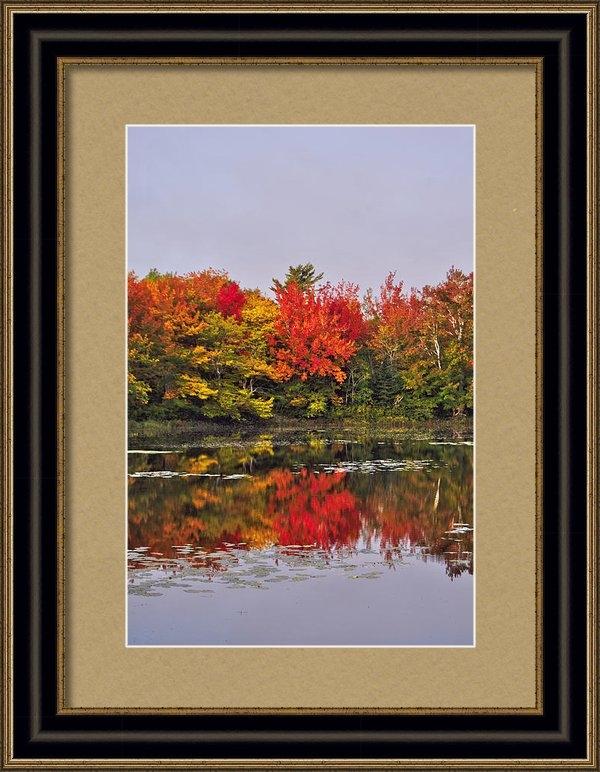 Kathleen Sartoris - Autumn Portrait Print