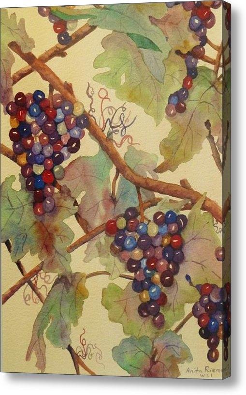 Anita Riemen - Grapes Again Print