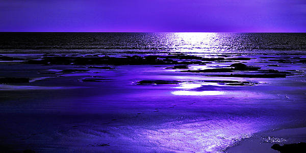 Phill Petrovic - Purple afternoon Print