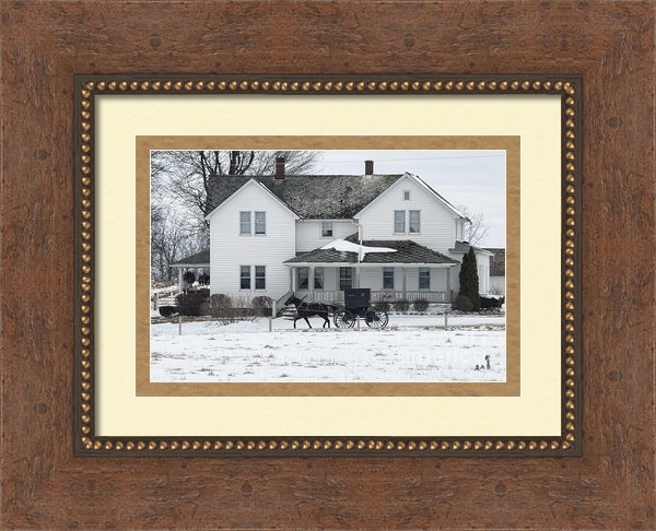 David Arment - Amish Buggy and Amish Hou... Print