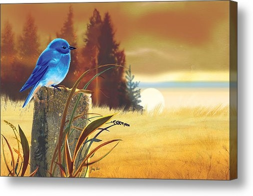 Tracy Herrmann - Bluebird Sunset Print