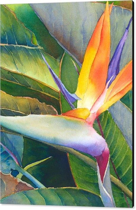 Judy Mercer - Its a Bird Print